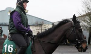 Penhill-Horse-Racing