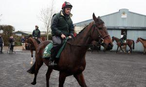 Bellshill-Horse-Racing