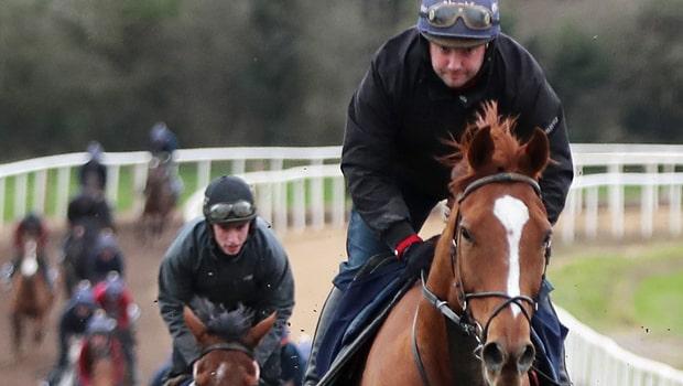 Samcro-Horse-Racing-Cheltenham-Festival