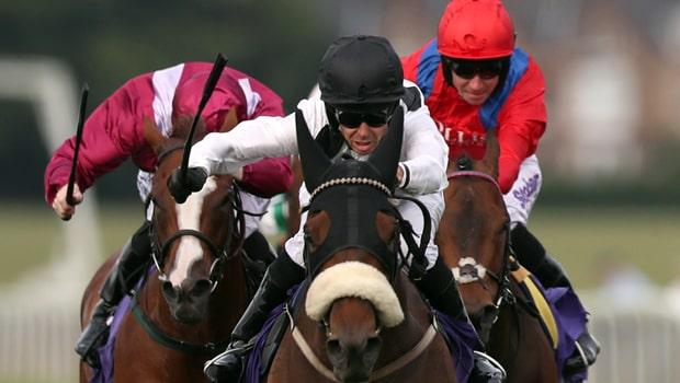 Judicial-Horse-Racing